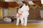 Kreiseinzelmeisterschaften2013_003.jpg